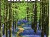 impactmagazine-2ndqrt-2008.jpg